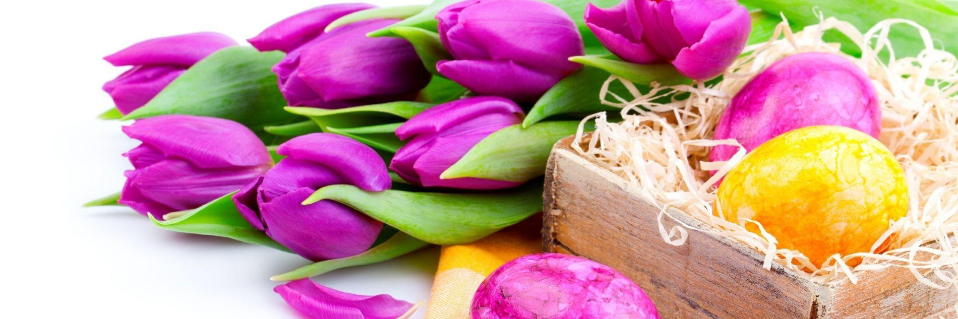 wielkanoc-tulipany-pisanki.jpg